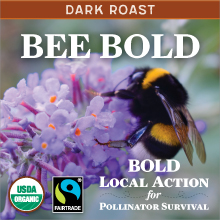Bee Bold Dark thumb