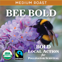 Bee Bold Medium thumb